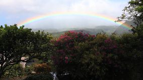 A rainbow over a garden in the tropics stock video