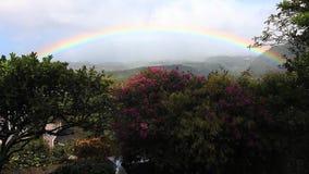 A rainbow over a garden in the tropics stock video