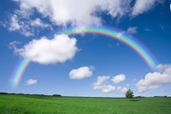 Rainbow Over Green Field Stock Photo