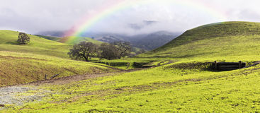 Rainbow Over Green Hills and Meadows in Spring Panoramic Stock Photo