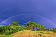 Rainbow over the green trees Stock Photo