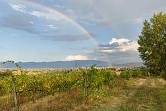 Rainbow over the italian vineyard Stock Photos