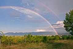 Rainbow over the italian vineyard Royalty Free Stock Photography