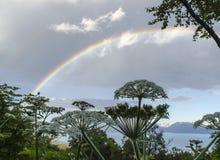 Rainbow over the Kenai Peninsula 1. A rainbow arches over a field of pushki on the Kenai Peninsula.  The Kenai mountains form a dramatic backdrop Royalty Free Stock Image