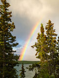 Rainbow over lake in boreal forest in YT, Canada Stock Photography