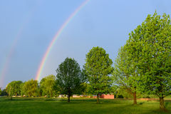 Rainbow over a line of trees Royalty Free Stock Image