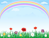 Rainbow over meadow with grass and flowers. Beautiful meadow with green grass, spring flowers and rainbow over blue sky. Room for your text. Vector illustration Royalty Free Stock Images