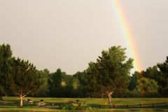 Rainbow over a park Stock Image