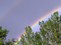 Rainbow over the poplar at Flowing Springs Royalty Free Stock Photo