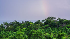 Rainbow over the rain forest Stock Photo