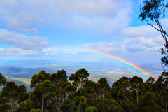 Rainbow over the rainforest Royalty Free Stock Image