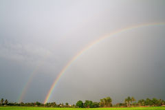 Rainbow over the rice field in evening Royalty Free Stock Images