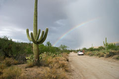 Rainbow Over Road in Saguaro National Park. Rainbow Over Desert Road in Saguaro National Park - Tucson, Arizona Stock Photography
