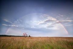 Rainbow over rowan tree after rain Royalty Free Stock Image