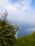 Rainbow over the sea with plants Stock Image