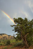 Rainbow over Sedona Royalty Free Stock Images