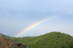 Rainbow over a taiga, Stolby park Royalty Free Stock Photo
