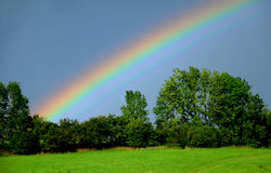 Rainbow over trees stock images