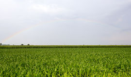 Rainbow over Vercelli countryside Stock Photos