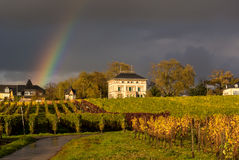 Rainbow Over The Vineyard Stock Images