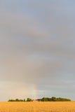 Rainbow over wheat field Stock Photography