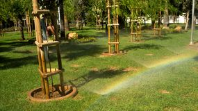 Rainbow in the park -  Limassol, Cyprus Royalty Free Stock Photography