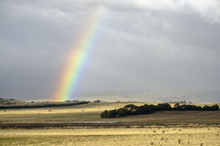 Rainbow on pasture Stock Photos