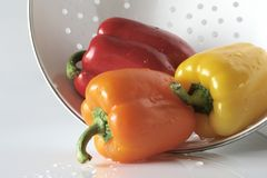 Rainbow Peppers in Colander Royalty Free Stock Image