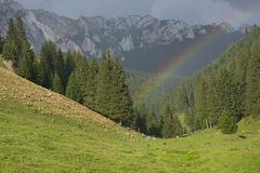 Rainbow. The photo was taken in Transylvania, in Hargita montain Stock Photos