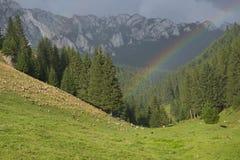 Rainbow. The photo was taken in Transylvania, in Hargita montain stock photos