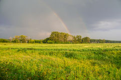 Rainbow after a rain on a rural field Royalty Free Stock Image