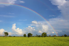 Rainbow on rainyseason Royalty Free Stock Photo