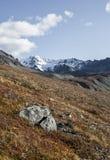 Rainbow Ridge. A shot of an alpine ridge in interior alaska Royalty Free Stock Image