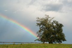 Rainbow rising in a stormy sky behind a summer pasture with fence and fruit tree in foreground. Rainbow rising in a stormy sky behind a summer pasture with fence stock image