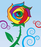Rainbow Rose Stock Images
