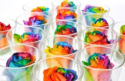 Rainbow roses. In cups Stock Image