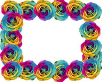 Rainbow roses frame Stock Images