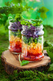 Rainbow salad Stock Image