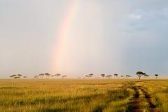 Rainbow in the Savannah. Beautiful Rainbow in the Kenyan Savannah. Massai Mara natural reserve stock image