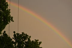 Rainbow After a Shower Royalty Free Stock Photo