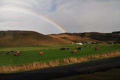 Rainbow Skogafoss Stock Photo