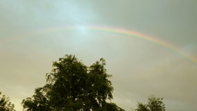 Rainbow in the sky, above the trees, against the background of gray clouds, after the rain.  stock footage
