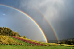 Rainbow, Sky, Field, Atmosphere stock image