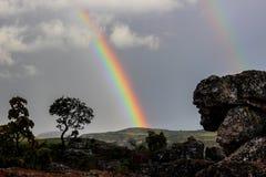 Rainbow, Sky, Meteorological Phenomenon, Tree royalty free stock images