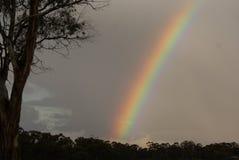 Rainbow Sky Stock Images