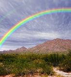 Rainbow Sonora Desert. Rainbow over the southwestern USA Sonora desert and mountains Royalty Free Stock Photo