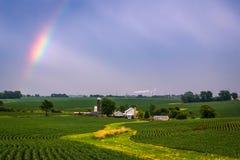 Rainbow sopra il campo Fotografie Stock Libere da Diritti