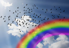Rainbow spring sky full of birds Royalty Free Stock Image