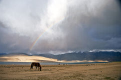 A rainbow after the storm, Tso-moriri, India. Tso-moriri lake in Ladakh, India. A rainbow after a storm. The lake lies at an altitude of 4600 meters on the Stock Photo