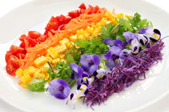 Rainbow super salad stock image